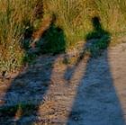 Handholding shadows