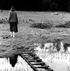 Lonesome woman walking